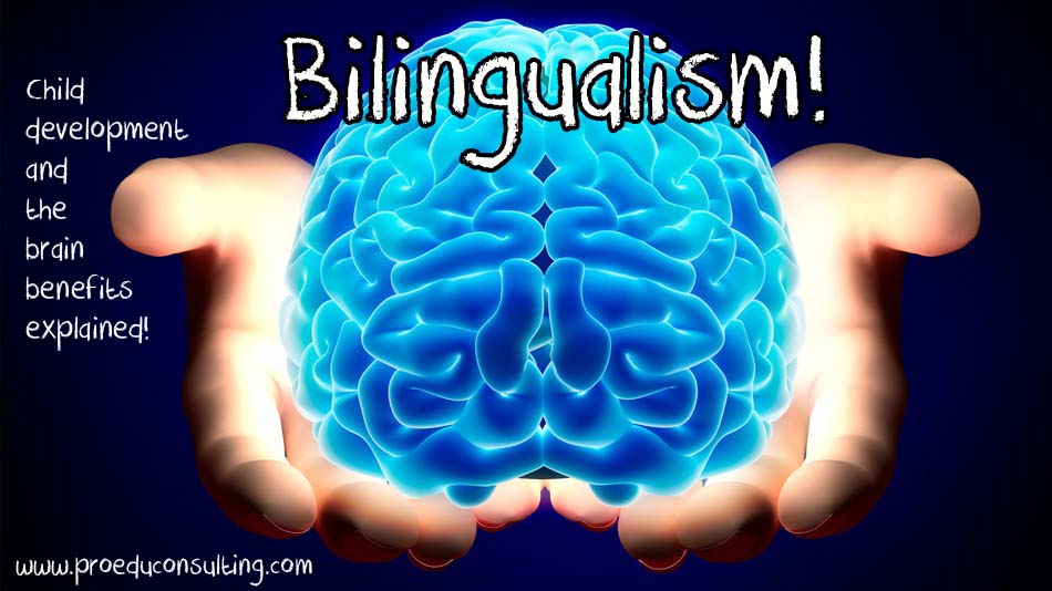 Bilingualism: A Gift Parents Can Give Children that Money Can't Buy